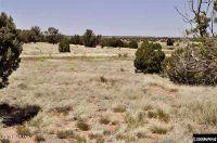 Home for sale: Tbd B Cr N8453, Concho, AZ 85924