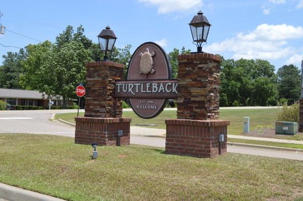 306 Turtleback Trail, Enterprise, AL 36330 Photo 34