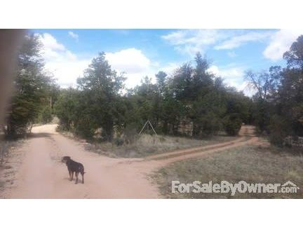 311 Seeley, Young, AZ 85554 Photo 3
