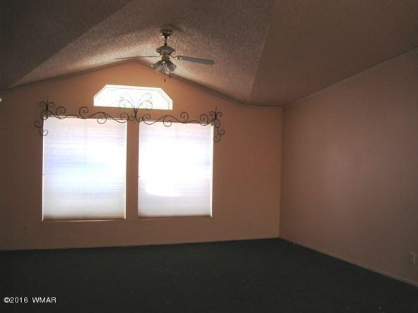 3030 Chevelon Rd., Overgaard, AZ 85933 Photo 57