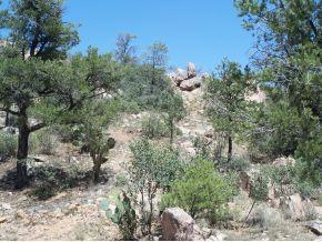 6650 Box Canyon -, Prescott, AZ 86305 Photo 4