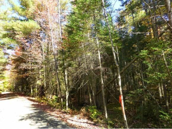 Lot #6 Woodland Dr., North Troy, VT 05859 Photo 3