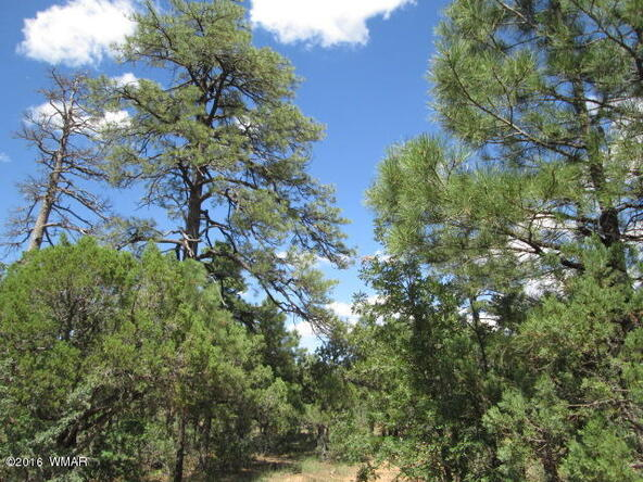 4170 W. Sugar Pine Loop, Show Low, AZ 85901 Photo 4