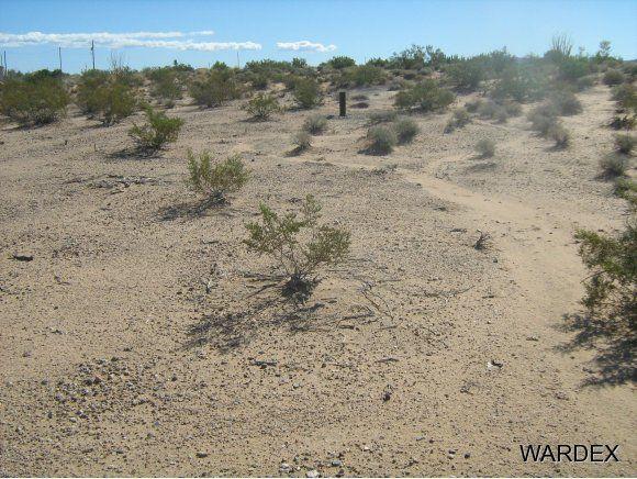 16235 S. Shep Ln. S, Yucca, AZ 86438 Photo 8