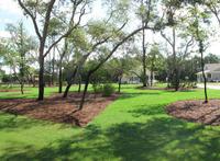Home for sale: 1 Front Porch Cir., Niceville, FL 32578