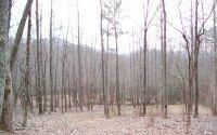 Home for sale: #2 Whisper Woods, Hiawassee, GA 30546