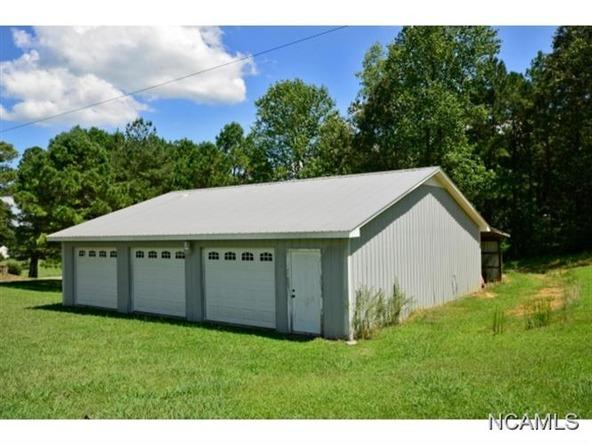 132 Co Rd. 202, Crane Hill, AL 35053 Photo 16