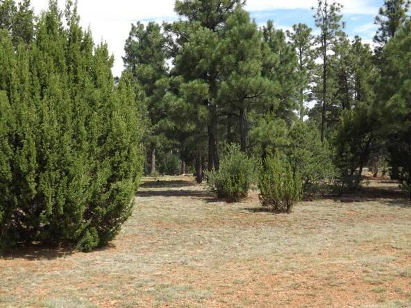 2374 Wildcat Cir., Overgaard, AZ 85933 Photo 16