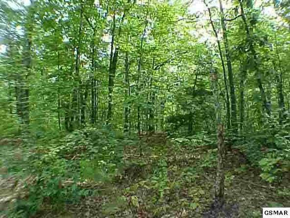Lot 112 Mimosa Dr., Sevierville, TN 37862 Photo 10