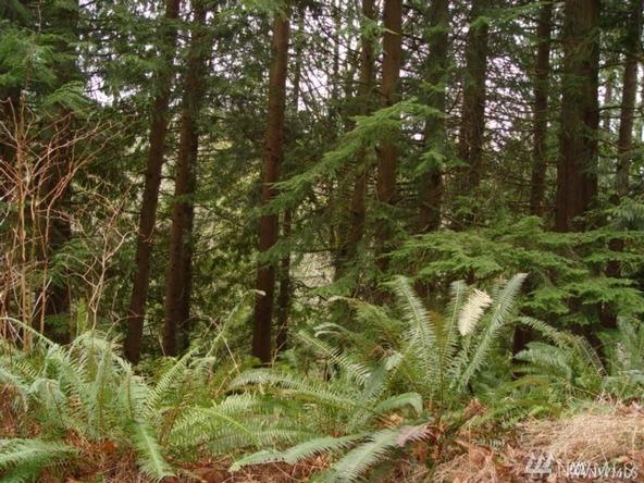 7 Deer Run Ln., Bellingham, WA 98229 Photo 2