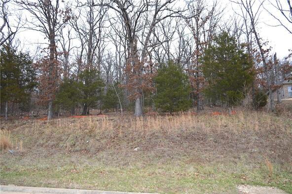 238 N. Skyview Ln., Fayetteville, AR 72701 Photo 5