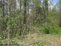 Home for sale: 3150 Dogtown Rd., Kingwood, WV 26537