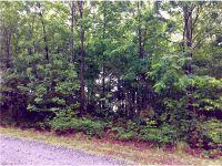 Home for sale: 0 Staton Ridge Rd., Saluda, NC 28773