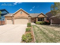 Home for sale: 12238 Sleeping Bear Rd., Peyton, CO 80831