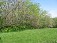 Home for sale: 529 N. Bluff Ct., Mechanicsburg, IL 62545