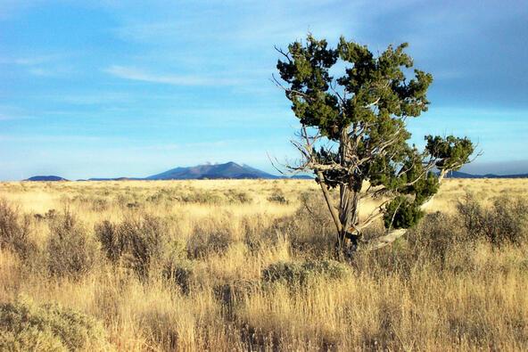 6218 S. Prairie Grass Ln., Williams, AZ 86046 Photo 13