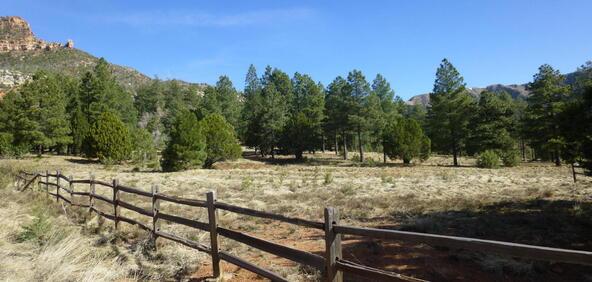 220 W. Zane Grey Cir., Christopher Creek, AZ 85541 Photo 56