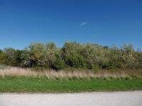 Home for sale: 6335 Windmill Ln., Grant Park, IL 60940