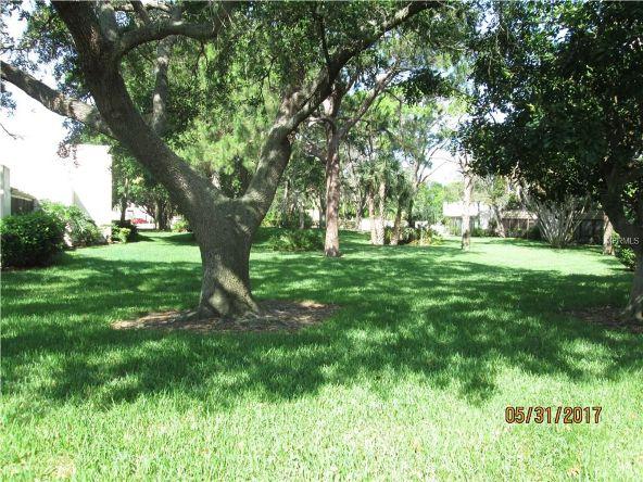 462 Palm Tree Dr., Bradenton, FL 34210 Photo 4