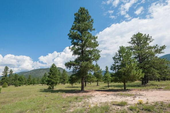 8r Lockett Ranches, Flagstaff, AZ 86001 Photo 6