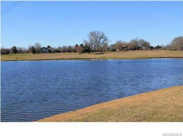 2122 Marler Rd., Pike Road, AL 36064 Photo 39