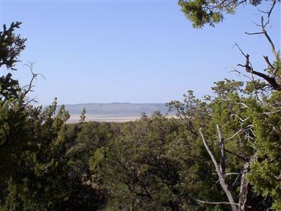 54867 N. Presidio Parkway, Seligman, AZ 86337 Photo 1