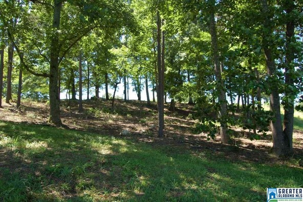 5.5 Acres Hwy. 431, Wedowee, AL 36278 Photo 6