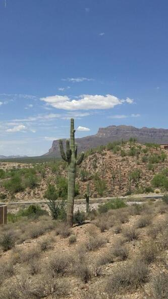4182 S. Calle Medio A Celeste --, Gold Canyon, AZ 85118 Photo 17