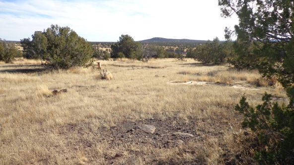 211 Juniperwood Rnch Un 3 Lot 211, Ash Fork, AZ 86320 Photo 1