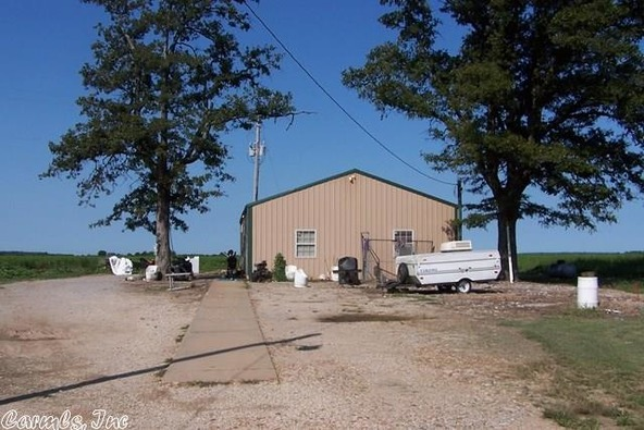 400 Acres Poinsett, Waldenburg, AR 72475 Photo 11