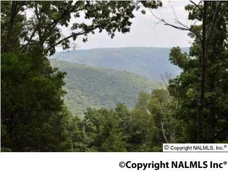 3 South Bluff Trail, Huntsville, AL 35803 Photo 10