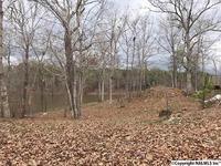 Home for sale: 570 County Rd. 620, Cedar Bluff, AL 35959
