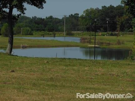 10 Oakridge Ln., Hartselle, AL 35640 Photo 3