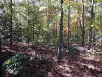 Home for sale: H Ross Mountain Rd., Mountain Rest, SC 29664