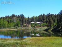 Home for sale: 182 Hidden Valley Dr., Lake George, CO 80816