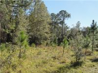 Home for sale: State Rd. 19, Altoona, FL 32702