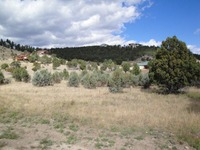 Home for sale: 135 Deer Valley Dr., Alto, NM 88312