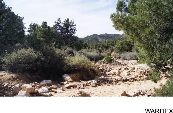 6731 N. Trap Springs Rd., Hackberry, AZ 86411 Photo 15