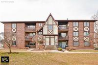 Home for sale: 10582 Palos Pl., Palos Hills, IL 60465