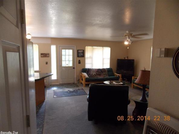1105 Walnut Grove Rd., Hector, AR 72843 Photo 37