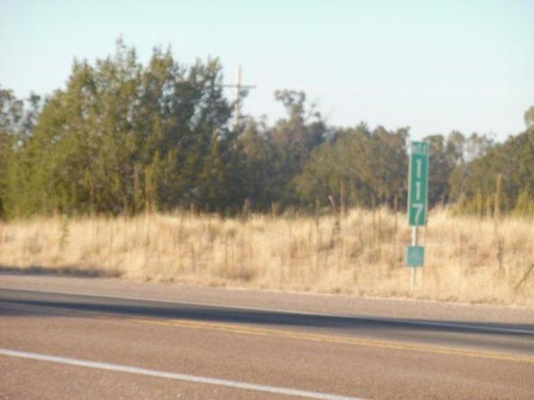 459 Hardrock Rd., Seligman, AZ 86337 Photo 47