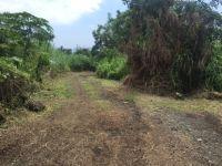 Home for sale: 76-6023 Mamalahoa Hwy., Holualoa, HI 96725
