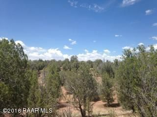 171 Friendship/Conwayden, Ash Fork, AZ 86320 Photo 10