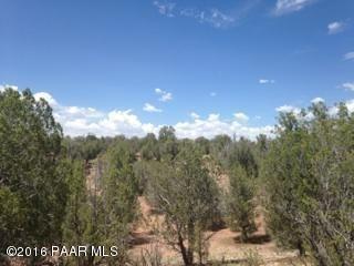 171 Friendship/Conwayden, Ash Fork, AZ 86320 Photo 21