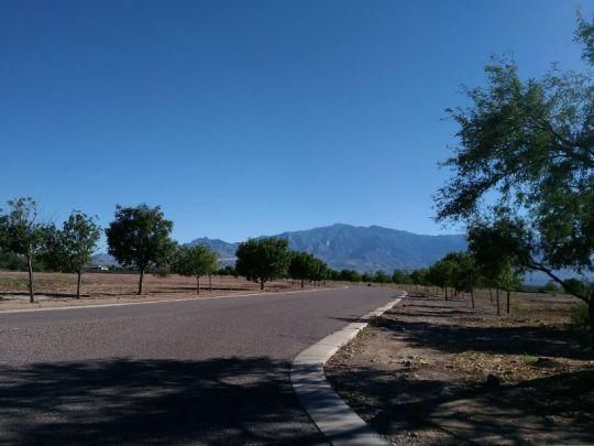 6685 W. Oak Ln., Pima, AZ 85543 Photo 12