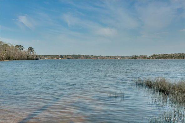 16093 Carmel Bay Dr., Northport, AL 35475 Photo 38