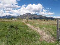 Home for sale: Don Bernabe Garcia Ln. Tract 4, El Prado, NM 87529