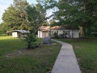 Home for sale: 1768 Gum Pond, Lumberton, MS 39455