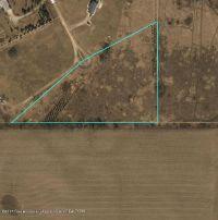 Home for sale: 0 Twila Ln. S., Charlotte, MI 48813