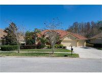 Home for sale: 785 Winslow Park Blvd., Tarpon Springs, FL 34688